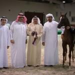 دي خطاف - مربط دبي