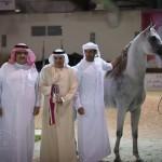 دي ثريا - مربط دبي