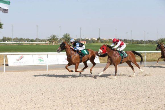 """الجواد """" بيج أند ريتش """" لمربط عذبه يحقق المركز الأول في شوط الجياد العربية الأصيلة بمضمار دبي"""