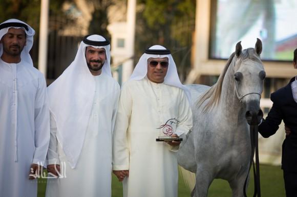 دي ريم لمربط دبي