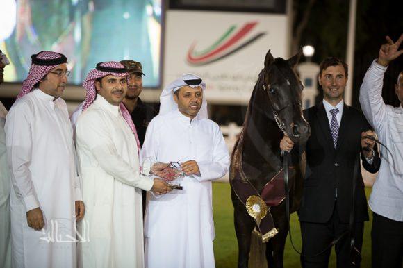 النتائج النهائية بالصور لبطولة أبوظبي الدولية لجمال الخيل العربية الأصيلة ٢٠١٥