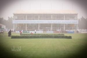 البطولة الوطنية 6