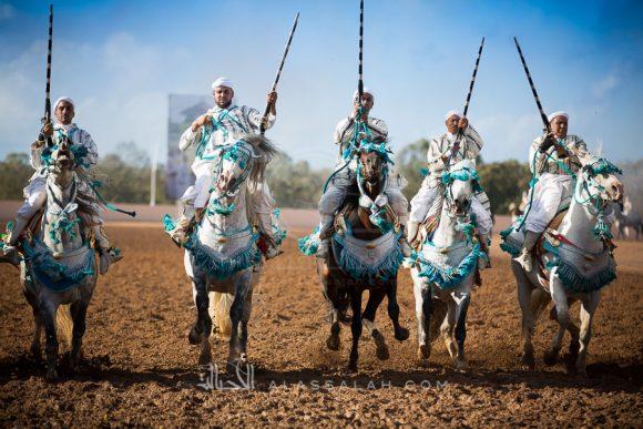 المغرب الجديدة ٢٠١٦