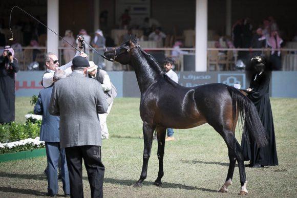 الأمير سلطان الخالديةISSS2691