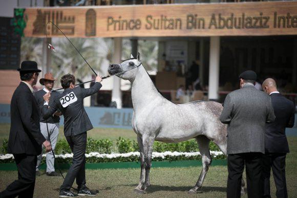 الأمير سلطان الخالديةISSS2740