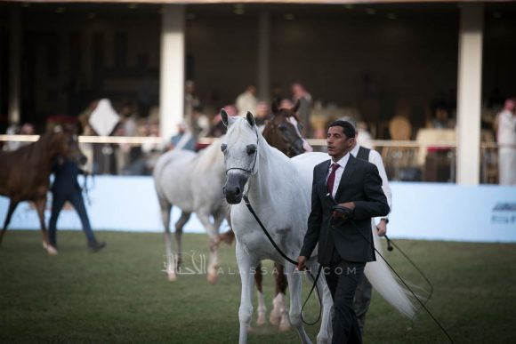 الأمير سلطان الخالديةISSS2936