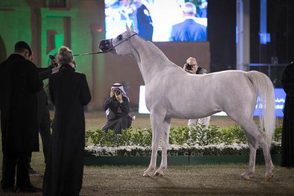 الأمير سلطان الخالديةISSS2990