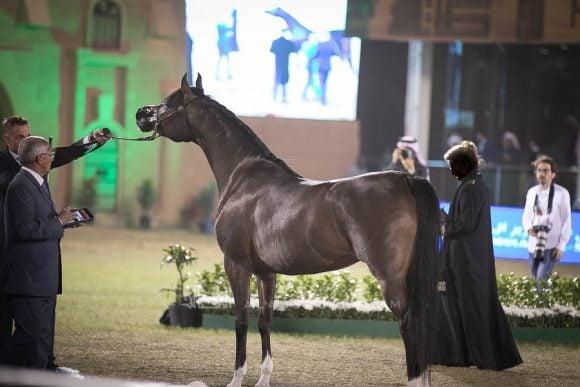 الأمير سلطان الخالديةISSS3011