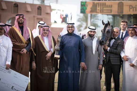 ماهر السيد(الكساندرx ميرا السيد) مربط السيد – السعودية.