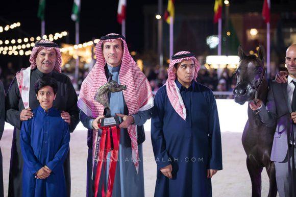 اركان بي اتش ام (اليكاسندر x اليجرا) مربط علي غانم المزروعي – الإمارات