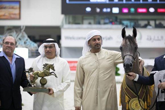 دي نايل (اف ايه الرشيم x دي نوال) مربط دبي- الإمارات