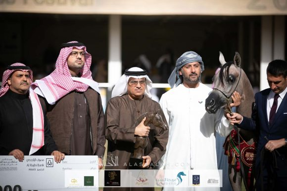 دي فريهان (دي سراج   xايلي فلامينكا) مربط دبي – الإمارات.