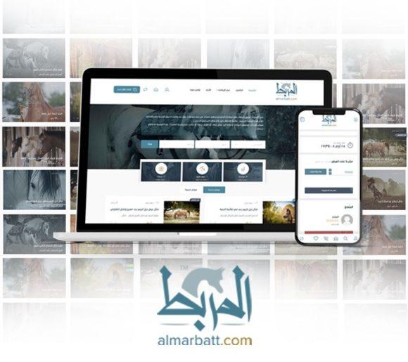 افتتاح «المربط» أول منصة الكترونية لتسويق الخيول العربية الأصيلة