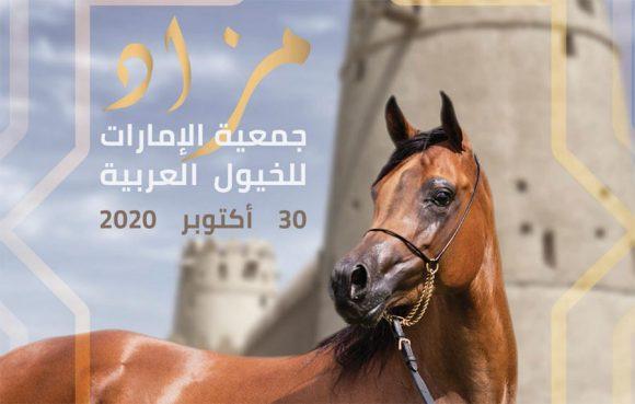 جمعية الإمارات تنظم مزاد الخيول العربية (للجمال) يوم الجمعة 30 اكتوبر 2020 – قائمة الخيل المعروضة