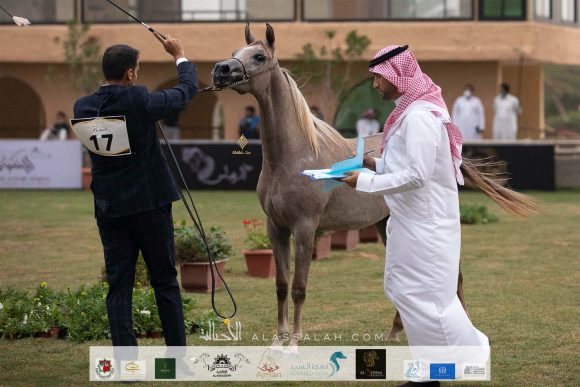 Taif 2020 1st day 22020-10-02 at 12.41.10 PM 3