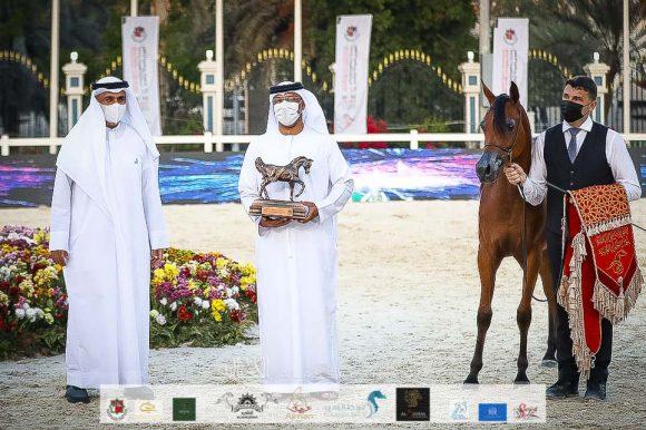 فضية وبرونزية لمربط عجمان في بطولة أبوظبي الدولية 2021