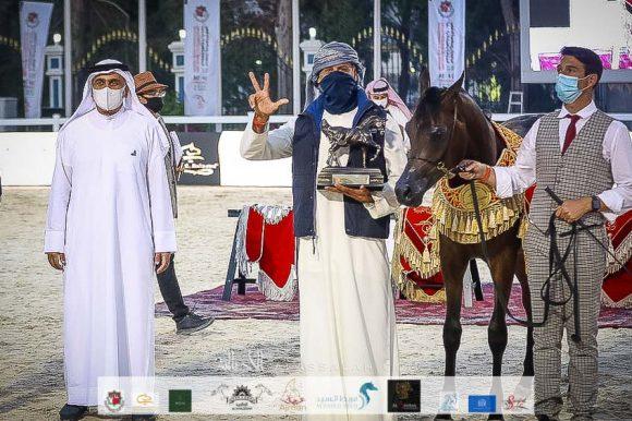 دي راسل (اف ايه الرشيم x ليدي فيرونكا) مربط دبي