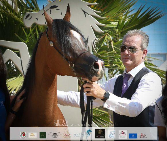 آر دي اس اكسويسيت (اكسكاليبور إي ايه x انجليكا كيه اس ) الأوراسية – البحرين