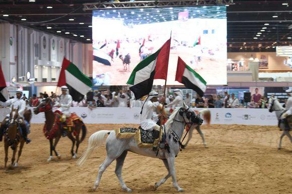 قفزة نوعية تشهدها فعاليات الخيل في معرض أبوظبي الدولي للصيد والفروسية