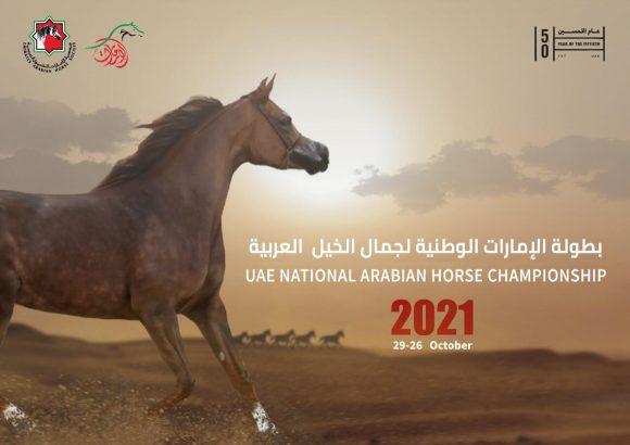 بطولة الإمارات الوطنية 2021 لجمال الخيل تنطلق غدا بمشاركة 433 جوادا
