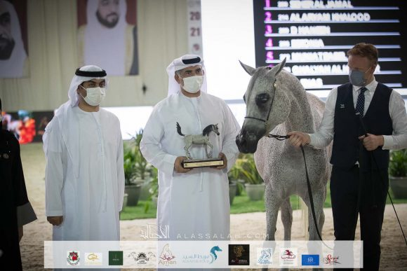 نتائج اليوم الأول والثاني لبطولة الإمارات الوطنية 2021 لجمال الخيول العربية