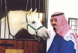 الملك يرعى العرض الوطني الرابع لجمال الخيل العربية