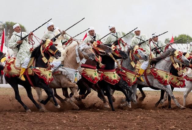 معرض الفرس في المغرب يستقطب أكثر من 100 عارض عالمي
