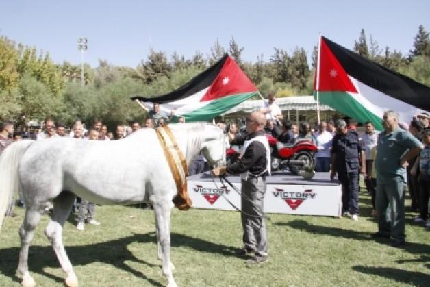 بطولة الشرق الأوسط لجمال الخيول العربية الأصيلة تنطلق اليوم بالأردن