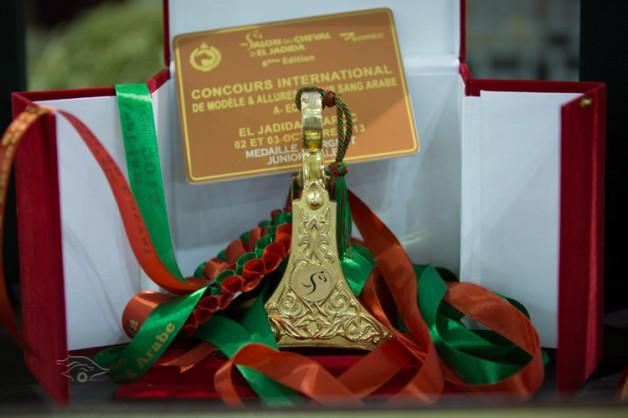 مقتطفات من اليوم الثاني لأحداث معرض الفرس السادس وبطولة الجديدة لجمال الخيول العربية الأصيلة بالمغرب