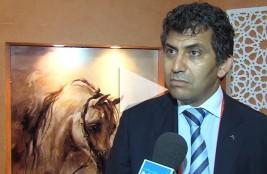 د.مشموم: أهمية إرساء تعاون بناء بين الدول العربية حفاظا على الجواد العربي – فيديو
