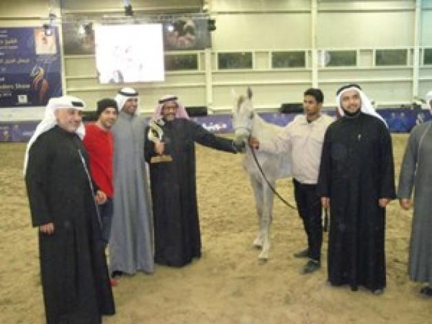 منافسات مثيرة في بطولة الكويت لجمال الخيل العربية