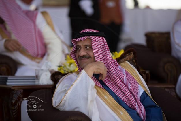 زيادة جوائز مهرجان الأمير سلطان العالمي للجواد العربي إلى 10 ملايين ريال