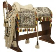 Arabian horse treasures up for auction