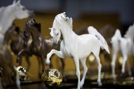 DUBAI INTERNATIONAL HORSE FAIR AND DUBAI INTERNATIONAL ARABIAN HORSE CHAMPIONSHIP OPEN TODAY