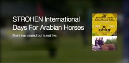 البث المباشر لليوم الختامي لبطولة ستوخن ٢٠١٤ الدولية لجمال الخيل العربية الأصيلة