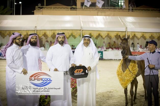 مربط غرناطة يخطف بطولة المواليد بذهبيتين وبرونز ضمن فعاليات بطولة كأس منتجي الخيل العربية الثالثة ٢٠١٤