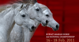 النتائج التفصيلية لبطولة الكويت الوطنية الثانية