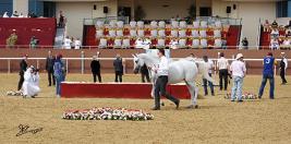 نتائج بطولة قطر الدولية ٢٠١١ بالصور