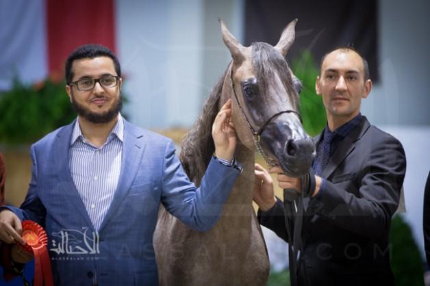 """خالد السـيد: إنجاز """"كل الأمم"""" هدية للوطن .. وهدفنا القادم الإنتاج"""