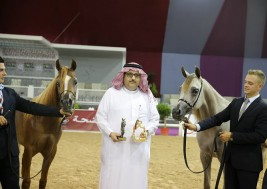 «عذبه» و «الخالدية»  يتحصلان على نصيب الأسد من ذهب بطولة المغرب الدولية السابعة
