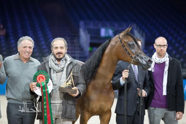 مقتطفات من اليوم الأول من بطولة العالم باريس 2014 لجمال الخيل العربية الأصيلة