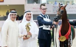 «البداير» و «الزبير» و «الهواجر» و «دبي» أبطال ذهب «الشارقة ٢٠١٤» المحلية للجواد العربي