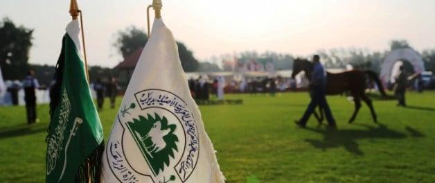 مركز الملك عبدالعزيز يستحث الراغبين بإقامة بطولات جمال للخيل العربية الأصيلة بالمملكة