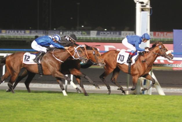 """كأس دبي العالمي يرفع جوائز """"كحيلة كلاسيك"""" للخيول العربية إلى مليون دولار"""