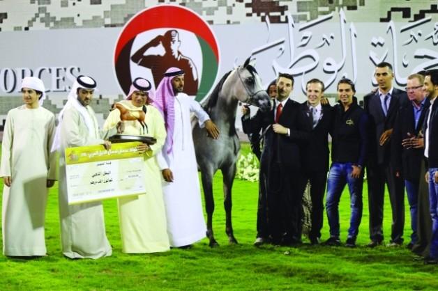 مربط دبي يتفوق بإنتاجه من الخيول العربية الأصيلة