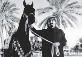 عبدالله بن عبدالعزيز.. فارس صنع رياضة الفروسية
