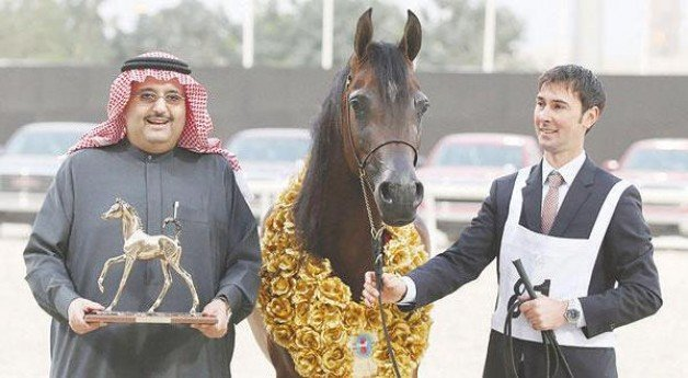 سيطرة سعودية على ذهب قطر ٢٤ و«بايسولا» تواصل نجاحاتها مع «عذبه»