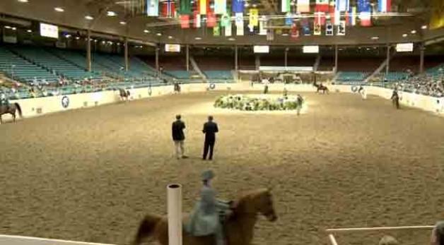 Expo NM losing Arabian Horse Association show