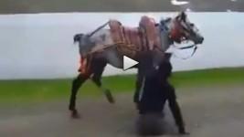 رجل مبتور الساقين يركب الخيل بمهارة .. فيديو