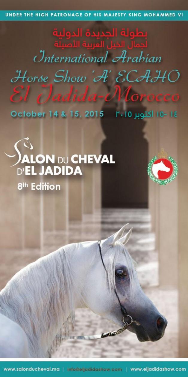 بطولة الجديدة الدولية لجمال الخيل العربية الأصيلة